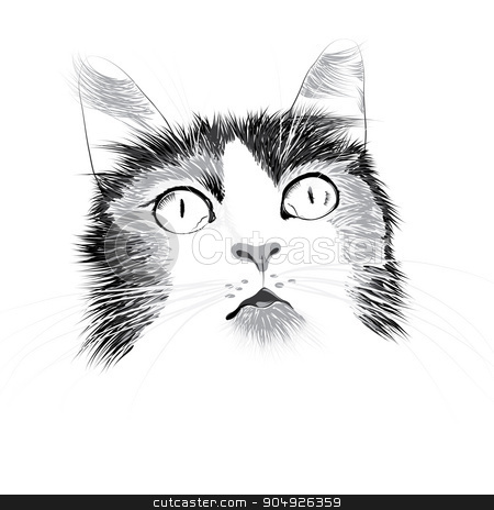 Illustration head of a cat stock vector clipart, Illustration head of a cat by ElemenTxD