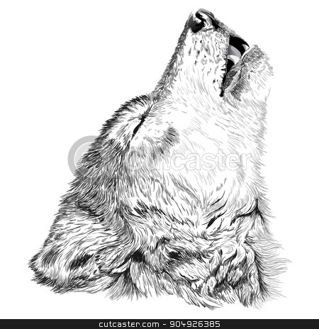 Wolf howls sketch stock vector clipart, Vector portrait of angry wolf face by ElemenTxD