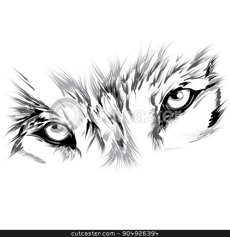 Wolf's face stock vector clipart, Wolf's face by ElemenTxD