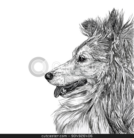 Sketch of Siberian dog stock vector clipart, Sketch of Siberian dog black and white by ElemenTxD