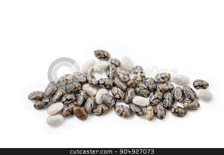 Chia seeds on whie. stock photo, Chia seeds isolated on white background. by Miss. PENCHAN  PUMILA