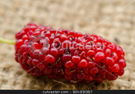 Red mulberry. stock photo, fresh organic red mulberry on sack background. by Miss. PENCHAN  PUMILA