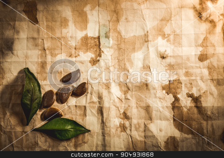 Background with old paper stock photo, Background with old paper, seeds and leaves by Liubov Nazarova