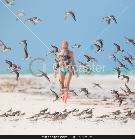 Woman walking on the beach. stock photo, Woman walking on the beach among flock of birds. Beautiful caucasian model  wearing colorful scarf and turquoise bikini on vacations on Paje beach, Zanzibar, Tanzania by kasto