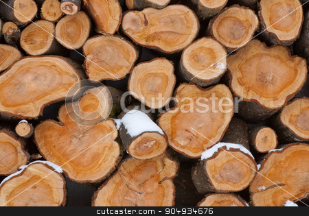 Firewood logs stock photo, The section of the firewood logs stacked up on top of each other in a pile  by Attila Toró