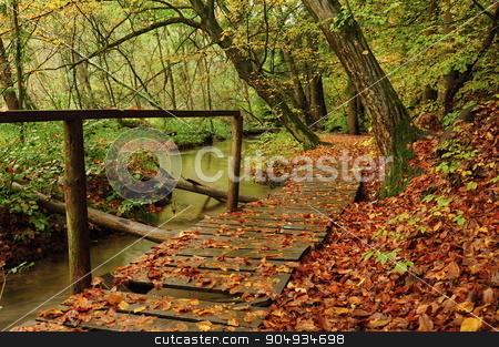 Footbridge in the woods stock photo, Wooden footbridge across a marsh in the dark forest by Ondrej Vladyka