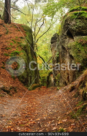 Autumn in the rocks stock photo, Colorful autumn, trees, fallen leaves and mossy rocks by Ondrej Vladyka