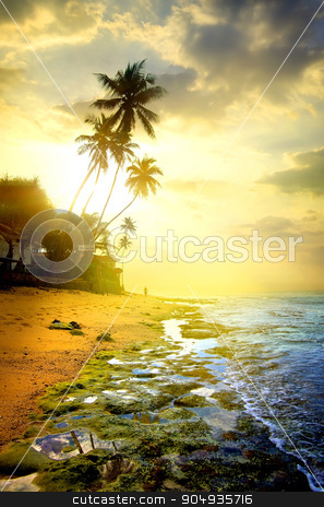 Evening and ocean stock photo, Evening on a beach of the ocean by Givaga