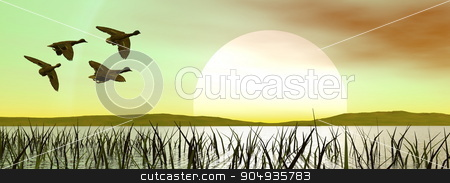 Duck flying by green sunset stock photo, Flock of duck flying upon a pond with grass by green sunset by Elenarts