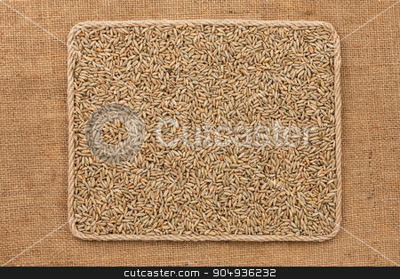 Frame made of rope with rye grains on sackcloth stock photo, Frame made of rope with rye grains on sackcloth, as background, texture by alekleks