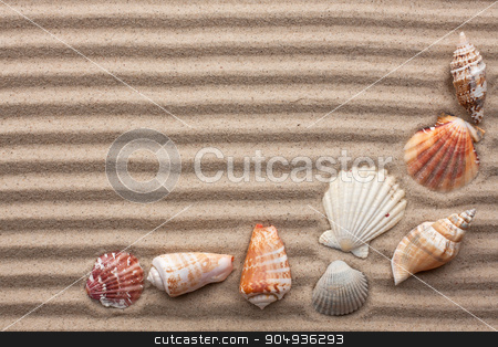 Seashells amid undulating sand  stock photo, Seashells amid undulating sand as background by alekleks