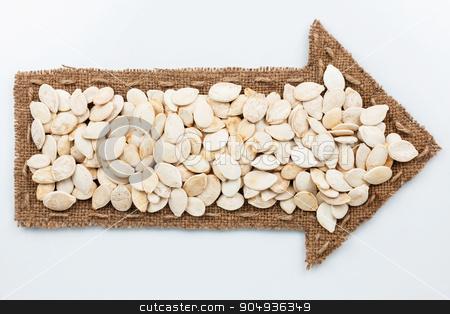 Pointer with pumpkin seeds stock photo, Pointer with pumpkin seeds, on white background by alekleks