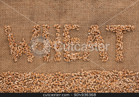 Word wheat  written on burlap  stock photo, Word wheat  written on burlap , background  by alekleks