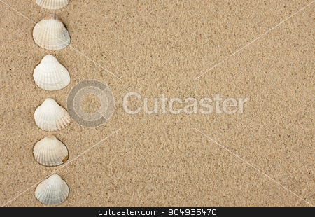 Sea shells, background stock photo, Sea shells, background, can be used to cover design   by alekleks