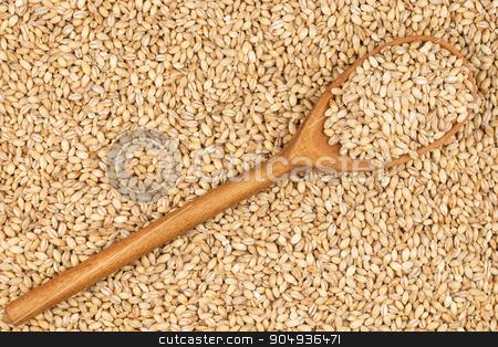 Wooden spoon with pearl barley stock photo, Wooden spoon with pearl barley, lies on pearl barley by alekleks