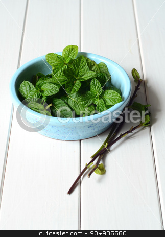 Fresh peppermint leaves stock photo, Freshly picked homegrown mint leaves by sutike