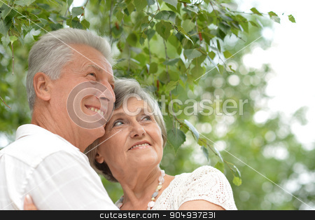 loving elderly couple  stock photo, loving elderly couple on a walk in the park in summer by Ruslan Huzau