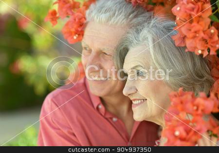 Senior couple  in summer park stock photo, Portrait of beautiful senior couple outdoor in summer park by Ruslan Huzau
