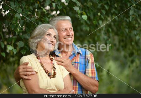 mature couple   in summer park stock photo, Portrait of a loving mature couple  in summer park by Ruslan Huzau