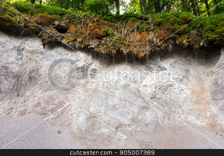 Erosion in the Forest stock photo, Detail of a landslide in the forest caused by the atmospheric agents, rain, wind and ice by catalby