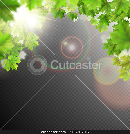 Summer leaves template. EPS 10 stock vector clipart, Summer leaves template on transparent background. EPS 10 vector file included by Vladimir Petrov