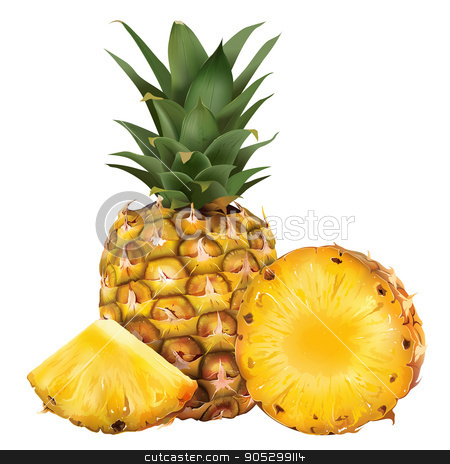 Pineapple on white background stock photo, Pineapple and his sliced segment. Isolated illustration on white background. by ConceptCafe
