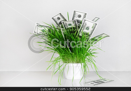 Dollars in grass stock photo, Dollars in grass. Hundred dollar bills in a pot with green grass on a gray background. Fake money. Conceptual image on the business theme. by Veresovich