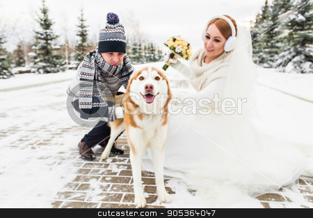 Wedding couple with a dog in winter stock photo, bride and groom with dog Huskies in winter by Satura86