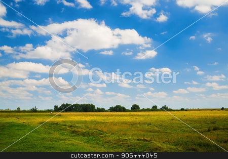 Summer rural landscape stock photo, Summer rural landscape. Blue sky with cumulus clouds and a grass field. Trees on the horizon. by Veresovich