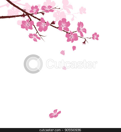 Cherry branch with flowers isolated on white stock vector clipart, Cherry branch with flowers isolated on white background by Makkuro_GL