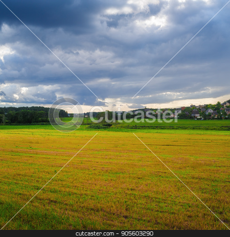 Field and sky stock photo, Overcast summer day in the countryside. Field of grass and sky with clouds. by Veresovich