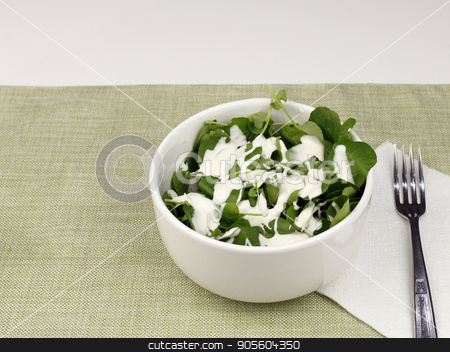 Healthy Watercress and Blue Cheese Salad stock photo, One white bowl of watercress salad with blue cheese salad dressing. Lunch of a fresh small leaf watercress salad with blue cheese salad dressing close-up. by Lee Serenethos