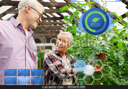 happy senior couple at farm greenhouse stock photo, organic farming, gardening, agriculture, old age and people concept - senior woman and man growing tomatoes at greenhouse on farm by Syda Productions