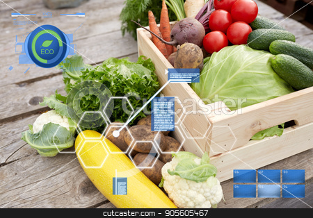 close up of vegetables on farm stock photo, organic farming, food and agriculture concept - close up of vegetables on farm by Syda Productions