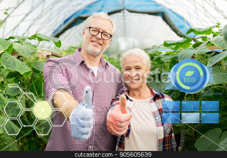 happy senior couple at farm showing thumbs up stock photo, organic farming, gardening, agriculture and people concept - happy senior couple at farm greenhouse showing thumbs up by Syda Productions