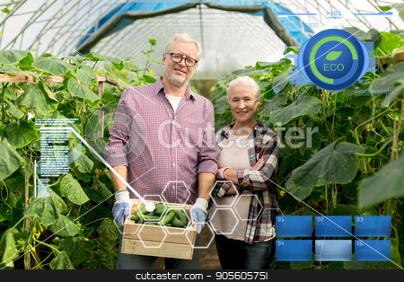 senior couple with box of cucumbers on farm stock photo, organic farming, agriculture and people concept - senior couple with box of cucumbers at farm greenhouse by Syda Productions