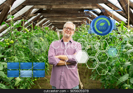 happy senior man at farm greenhouse stock photo, organic farming, gardening, agriculture and people concept - happy senior man at farm greenhouse by Syda Productions