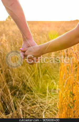 Back view of beautiful love couple holding hands outdoors over a summer field background. Close-up stock photo, Back view of beautiful love couple holding hands outdoors over a summer field background by Satura86