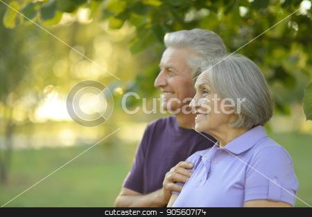 senior couple hugging  stock photo, Portrait of a happy senior couple hugging outdoors by Ruslan Huzau