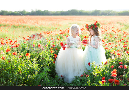 childhood, countryside, kid models, spring concept - two laughing beautiful little girls in pretty white and blue dresses with tulle skirts out in poppy field, both holding bouquet of flowers stock photo, childhood, countryside, kid models, spring concept - two laughing beautiful little girls in pretty white and blue dresses with tulle skirts out in poppy field, both holding bouquet of flowers by Dmitry