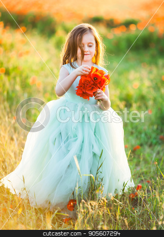 beauty, childcare, wedding, freedom concept - in orange light of sunset young fascinating model, wearing turquoise poofy dress with tulle skirt, walking through the field, holding bunch of poppies stock photo, beauty, childcare, wedding, freedom concept - in orange light of sunset young fascinating model, wearing turquoise poofy dress with tulle skirt, walking through the field, holding bunch of poppies by Dmitry