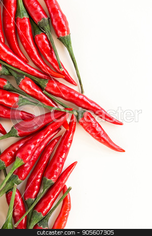 red hot chili peppers, popular spices concept - beautiful bunch of red chili hot pepper, fresh ripe pods with green peduncle on white background, flat lay, toop view, free space for text, vertical. stock photo, red hot chili peppers, popular spices concept - beautiful bunch of red chili hot pepper, fresh ripe pods with green peduncle on white background, flat lay, toop view, free space for text, vertical by Dmitry