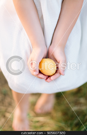 food, countrylife, lifestyle, nature, childcare, health, diet, vegetarianism, wedding concept - delicate yellow apricot lying in small soft hands of girl in snow white dress stock photo, food, countrylife, lifestyle, nature, childcare, health, diet, vegetarianism, wedding concept - delicate yellow apricot lying in small soft hands of girl in snow white dress by Dmitry