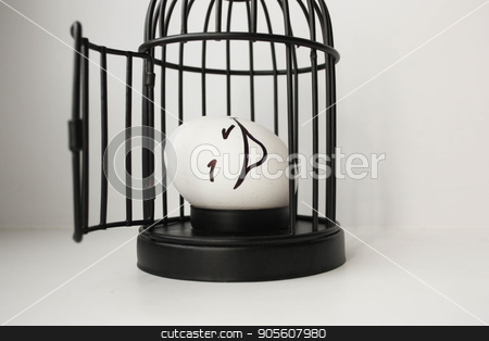 Eggs with painted face. Photo for your design stock photo, Eggs with painted face. Photo for your design. Smiling egg in a cage, laughing. The concept of small-sized housing. mortgage. credit by Kseniia