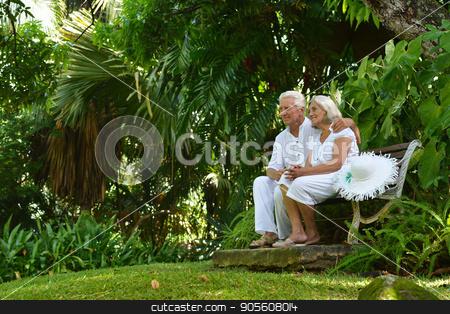 Senior couple sitting on bench  stock photo, Happy senior couple sitting on wooden bench outdoors by Ruslan Huzau