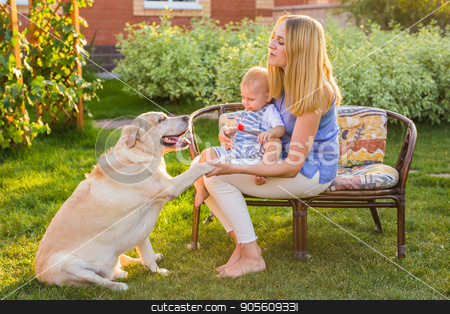 Mother holding baby son and playing with labrador dog in the park stock photo, Mother holding baby son and playing with labrador dog in the park by Satura86