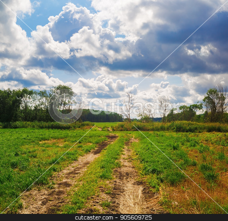 Country road through a field stock photo, Country road through a field of green grass. Cloudy sky and trees on the horizon. Rural landscape. by Veresovich
