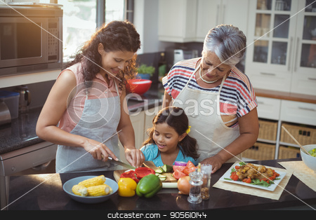 Mother teaching daughter to chop vegetables in kitchen stock photo, Mother teaching daughter to chop vegetables in kitchen at home by Wavebreak Media