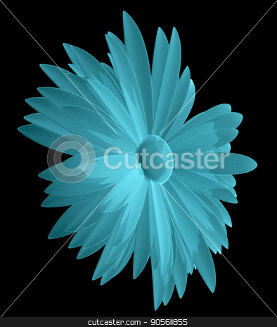 X-Ray Image of Chamomile Flower stock photo, X-Ray Image of Chamomile Flower, isolated on black background. 3D illustration by cherezoff