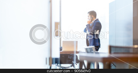 Businessman talking on a mobile phone while looking through window.